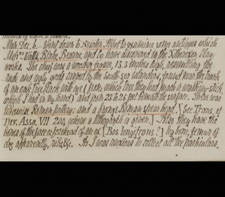 Kingsteignton Figure Diary Extracts