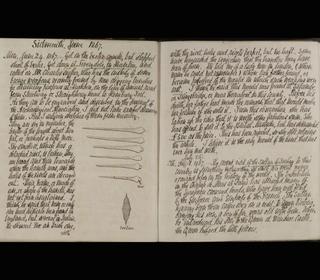 Three Bronze Rapiers diary extract